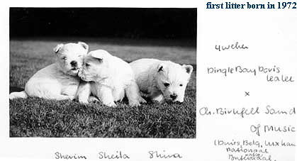 first litter born in 1972